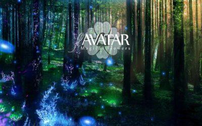 flAVATAR – Varázslatos Virágok